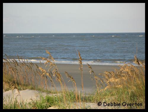 Beach0320